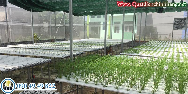 Quat thong gio cong nghiep shrv-400